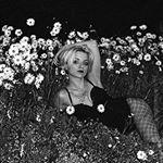 Avatar image of Photographer Natalia Sliwowska