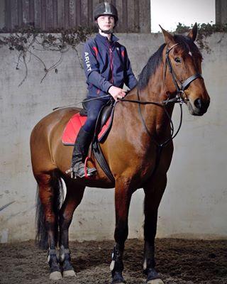 northernireland portraituk horseandrider pony mft chestnut horsesofinstagram godox equestrianlife horseriding olympusuk youngachievers newry equestrian documentaryphotography equinephotographer
