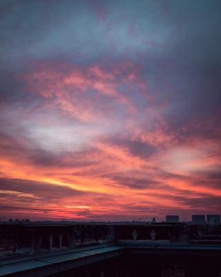 beanalpha belgianphotographers bxlmabelle sigmalens sunsetlovers topshot vscoshots