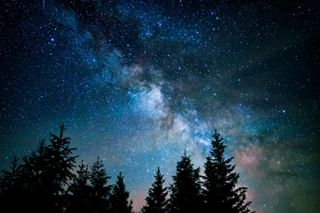 stars silhouette contrast landscapephotography trees artofvisuals nature colorful sky milkyway cosmic light carinthia artemdetail color astro longexposure longexpohunter astrophotography night shadow naturephotography longexposure_shots austria sonyalpha countryside sony astrology landscape