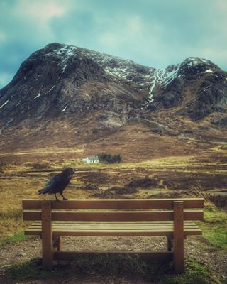 takeaseat ig_great_pics rise scotland_ig hills bestview landscape scotlandexplore scotland_lover birds mountains mycanon earth_pix outdoors travel earth_deluxe earthhour visitscotland highlands glencoe theartistvision ig_scotland view birdseyeview scotland adventure riseviews homesofinstagram