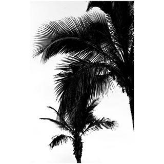 canon 35mmphotography 35mm ilforddelta400 canonphotography clouds filmphotography photography photographystudent grancanaria filisnotdead photooftheday puertorico