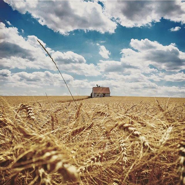 grain trip blue natur country clouds niederösterreich countryhouse instagramers house idyllic instagood cloudatlas