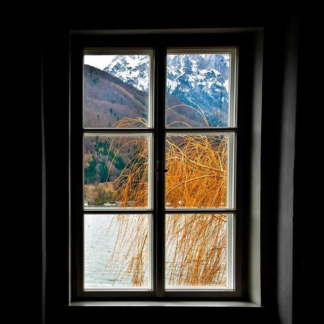 coldwater coldoutside mood icecold gmunden mountains austria yesterday winter photography fotoday instagood mountainlife picoftheday faraway windowview cold