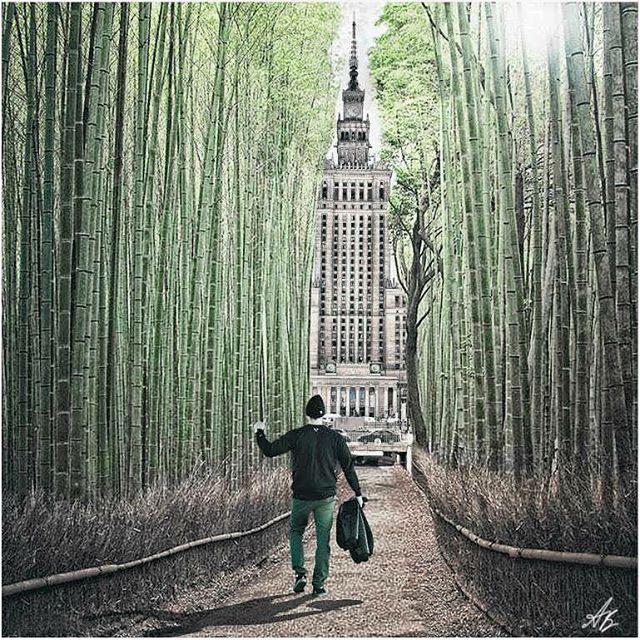 forest stronę polishboy pałackultury instagood never w instagramers słońca look back