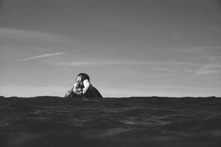 blackandwhite surfergirl newquay stives seagypsy kernow cornwallsurfphotographer coldwatersurfing waves surfgirl surfing coldwatersurf surfers fujifilm surfphotographer surf uksurf float surfphotography surfer wave fujifilmxseries newquaysurfphotographer surfinglife cornwall frothing winterwaves