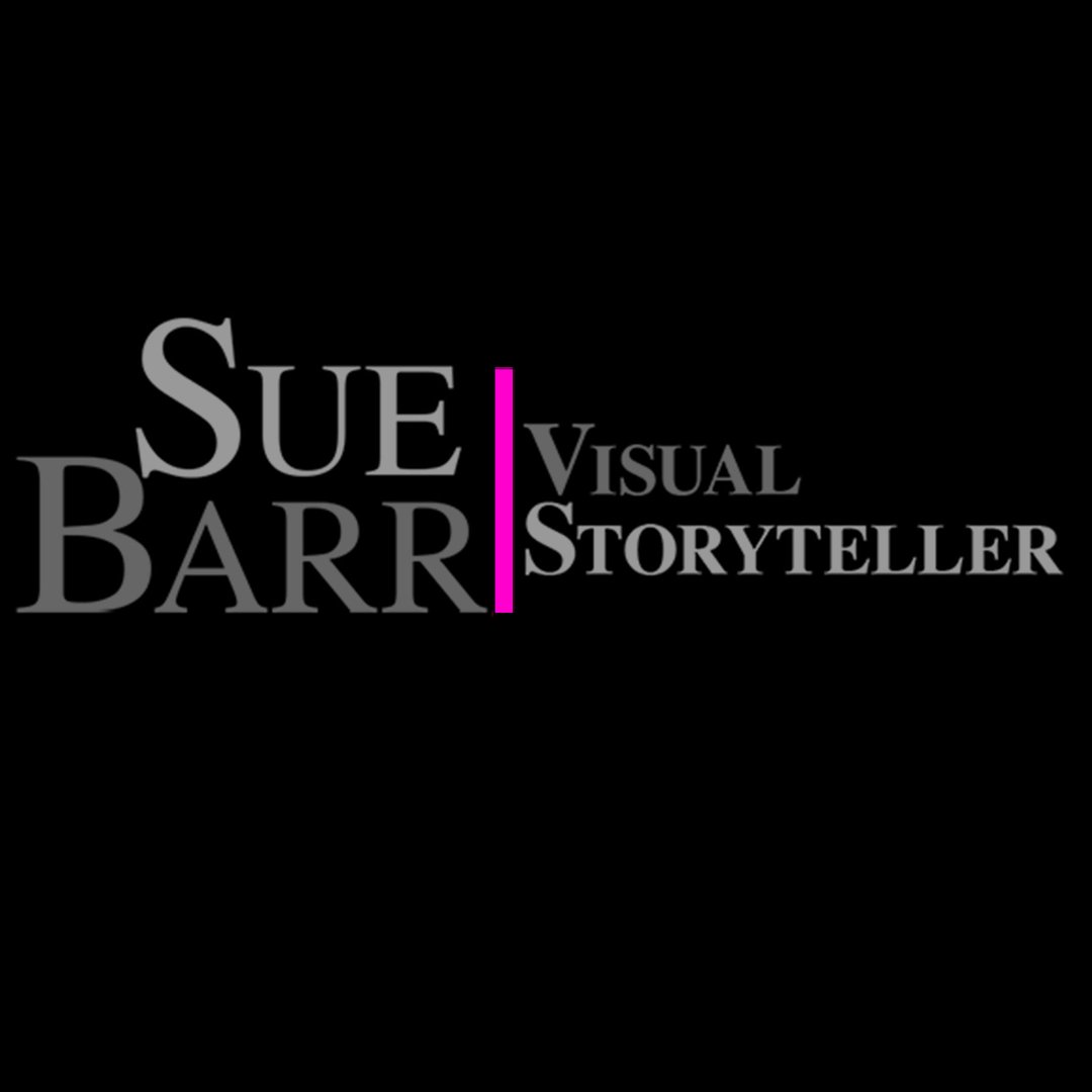 Avatar image of Photographer Sue Barr