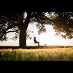 Avatar image of Photographer Sara Borbala Balogh