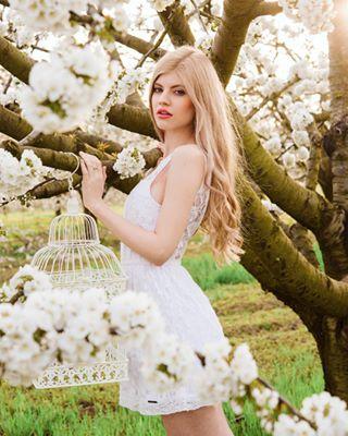 appletree beauty blondie blossom dream fairytail flower model muffinprojectphotography nikon photoshoot spring white