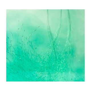 fineart crystalprague petrajansova underwatersquad studio