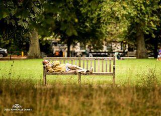 bench garden hydepark london man nap nature park photoshoot sleeping trees uk working