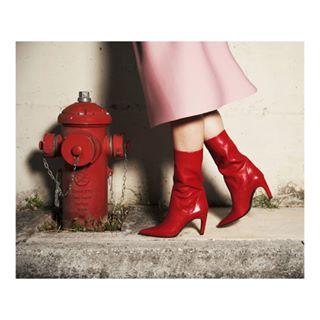 fashionshoes girl godox rosso nikon shoe photo photoshoot teamerre red style shooting equipment model light photography stilllife stilllifephotography girls fashion
