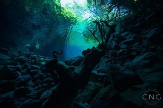 carolinnegrinphotography cavediving ccr diving divingingreece kefaloniacaves lakediving underwaterphotography underwaterworld