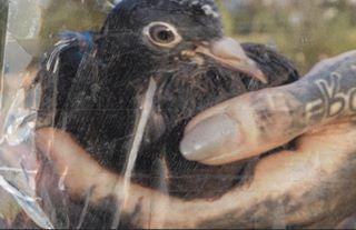 yetmagazine приднестровье taintedmag aintbad reportagespotligh 35mm fdicct portraitsdevilles hurtlamb thesmartview burnmyeye thecountrythatdoesnotexist тирасполь transnistria phornography