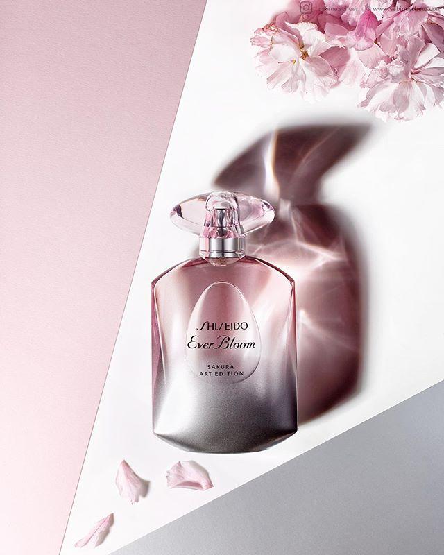 sakura sabinescheer cherryblossoms fotografenagentur scent shiseido bffde rockenfeller_goebels springtime