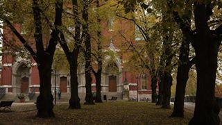 400followers autumn fall gracias johanneksenkirkko otoño spotoftheday