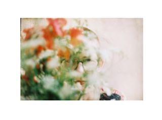 flowers slowflowers portrait analogphotography fieldflowers feminine