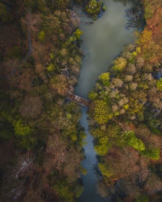 fromwheridrone drone_official areal dronepals gameofdronez droner explorer dronephotos dronespace dronephotography dronesdaily explore artofvisuals ig_drone dronegear dronepics folkscreative amzdronepics moodygrams dronestagram trees shotondji droneglobe topdronephotos exploretheunknown outdoortones dronegram woods drone_countries mavic2pro