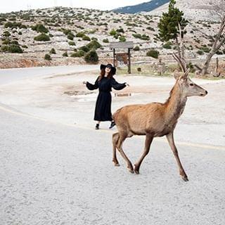 photoshooting antoniacantaphotography deer parnithamet witch
