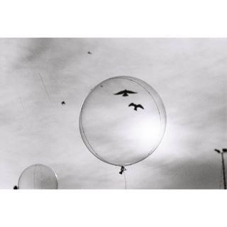 sunny blackandwhite zenit analogue analogphotography filmphotography day balloon birds