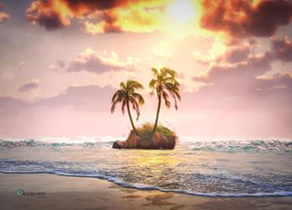 sunset_vision palmtrees colors_of_day2 photographic beachfront earthfocus discover_vacations sky_collection majestic_earth beautiful_world islande oceaneyes einsamkeit srs_sunshine lonely_planet strand costarica🇨🇷 sky_brilliance discover_earth sky_reflection sunsetbeach skylight sky_marvels atmosphere