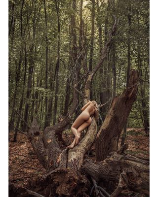 photographer vsco photomodel nymph photography woman photo sonya7rii act serbia tree sonyalpha photoshoot sky photooftheday art instaphoto sigma nature sony portrait_vison instagram goddess photographers actphotography beauty vscocam bealpha instagood