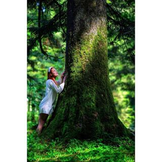 nikon fairytale croatia princes gorskikotar green conversation forest