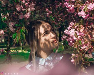 art floral floraldesign flower floweroftheday flowerstagram flowerstyles_gf happy instablooms instapic petal photography pink portrait smile spring sunlight tree