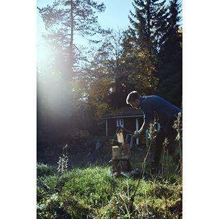 adventure autumnvibes countrysidelife explore folkgreen ig_sweden intothewild landroverdiscovery lifeandthyme miahagenow momentslikethese moodygrams optoutside outdoors roadtrip rusticstyle småland theartofperformance travel usintotheforest verylimoment visitscandinavia visitsweden wanderlust wildernessculture