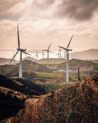 middleearth sharemewlg travel terawhitifarm explorenewzealand wellington windturbines newzealand hobbitland greenenergy northisland
