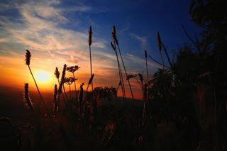 peaceful vscophoto sunset hike ontop naturelover vscophotography goldenhour naturephotography naturephoto golden greatful nature sunsetphotography fresh joy sunsetphoto colours love vsco bestview inspired naturelove