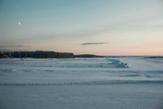 Timo Kostenko photo 1035693