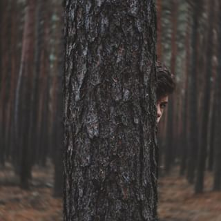 boy fineartphotography conceptualphotography treeman photography forest creativephotography photo unity tree magicforest