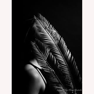 comment abstract photography creative photoftheday 2018 lowkeylighting lowkeyphotography estonia stylish lowkeyphoto follow lowkeylight followme picture treeleaves lowkey blackandwhite capture style tropical eestifotograafid leaves lowkeylightingphotography mysterious studiolight model tallinn studio