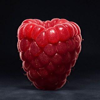 yummyyummy stilllifephotography standalonefruit raspberry puretaste joergkritzerphotography foodphotography closeup