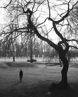 bnwportraits darkmood portaitmag eeriness portaitvision lovelines bnw lines scarystories perspective scary scarytree scale womaninthewoods shadowhunters shadowhunter