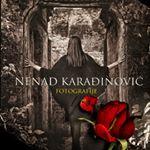 Avatar image of Photographer NENAD KARADJINOVIC
