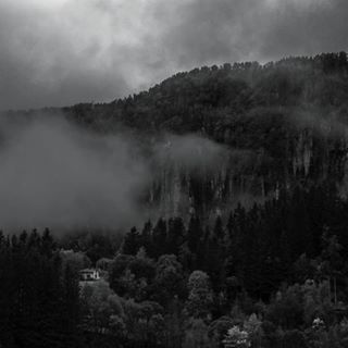 canoneos nature hill l4l forrest l4like woods mist fog norway blackandwhite tags4likes cabins tagsforfollowers mountain amaturephotography l4follow