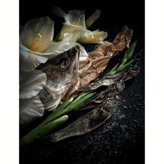 foodphoto mobilephotography