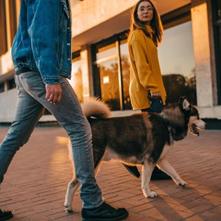 Stasya Burnashova  photo 805597