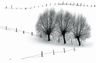 b bnw capturededication fotogeographica graphic landscape leadinglines learning lines microsoftfutureprophotographer photography slalom