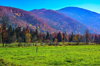 carpathianmountains carpathians eco europe grass green ivanofrankivskregion journey landscape meadow mountainrange mountains nature travel trip ukraine ukrainian voyage гори іванофранківщина карпати ландшафт подорож прикарпаття природа україна чистеповітря