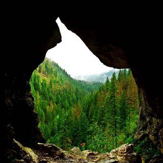 michalinikon fogg nationalpark tatry mountains cave pentax adventure nikonpolska zainspirowaniswiatlem theview forest instadaily polishmountains