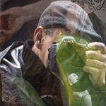 Avatar image of Photographer Michel Vandenplas