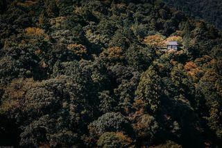 liveforthestory canonbelgium photographer photography japan