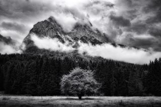 jj_lightcatchers bnw_mystery yourshotphotographer jj_blackwhite grainau bnwmood youpic bnw_captures raw_community homeland noir_shots natgeoyourshot bayernliebe mountains visitbavaria ig_naturelovers bnw_inst incredible_bnw bavaria fineartzone hidden_igers