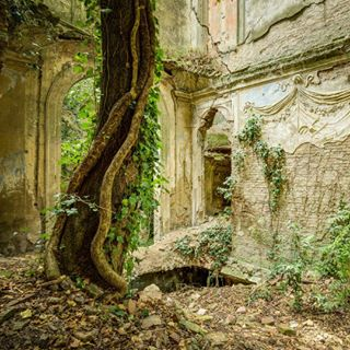 ancient photooftheday artist picoftheday abandoned palace naturelovers vintage art artwork instagram urbex old nature instagood photography architecture