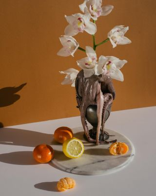 fotograaf stilleven geanlin stillifephotography vase fruits orange octopus stilllife
