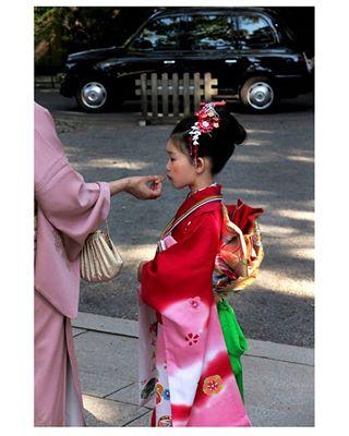 girl transmission kid love natgeo ceremony photography light instatravel temple harmony look red japanesefashion 8 dress travelphotography culture tradition travel kawaii instadaily anime happy hairstyles japan instagood beautiful cute kimono
