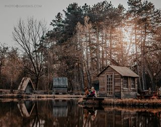 adventurealways beautifulview colors davidkisphotography dogphoto fairytale fishinglake happyeaster hungarianpointer hungary instadogs lake likeamovie magyarvizsla moody nature naturelover photography photooftheweek spring sunset sződliget sződligetihorgásztó treehouse vizsla woodenhouse woods